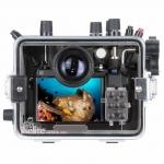 Ikelite 200DLM/A Underwater Housing for Olympus OM-D E-M10 III Mirrorless Cameras